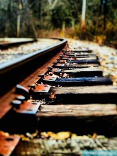 Tips For Taking Digital Photography Line Photography, Autumn Photography, Stunning Photography, Creative Photography, Digital Photography, Street Photography, Landscape Photography, Train Tracks, Cool Photos