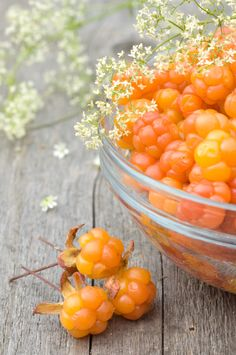 Cloudberries: Rubus chamaemorus is a rhizomatous herb native to alpine and arctic tundra and boreal forest, producing amber-colored edible fruit similar to the raspberry or blackberry