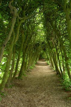 De Groene Bedstee near Arnhem- the Netherlands