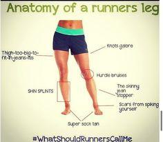 Running Jokes:Anatomy of a Runner's Leg