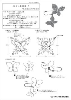 butterfly with chart