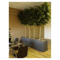 How About This As A Very Diffe Office Or Restaurant Divider An Artificial Pleached Hedge