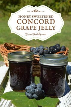 Transform the slightly tart and musky flavor of Concord grapes into a delicious Concord grape jelly sweetened with honey instead of sugar.