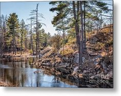"""#Canada Metal Print featuring the photograph """"The Pond"""" by Gene Healy. #landscape #pond"""