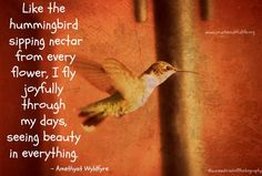 Hummingbird quote via www.yourbeautifullife.org
