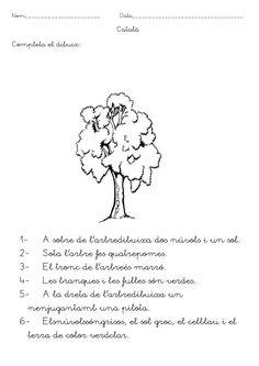 comprension-lectora-en-catalan_17.jpeg 595×842 pixels