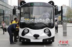 'Panda bus' appears in downtown Chengdu - People's Daily Online