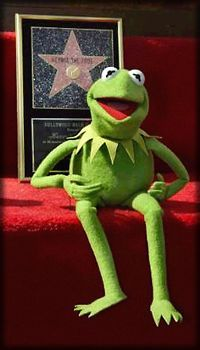 Kermit received the 2,208th star on the Hollywood Walk of Fame in 2002.