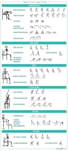 Image result for Posterior Total Hip Replacement Exercises | Hip ...