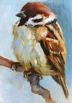 some beautiful paintings of birds