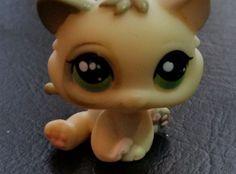 Littlest Pet Shop LPS Hasbro Green eyes White Gray Kitten Baby  Cat  #1074 RARE #Hasbro