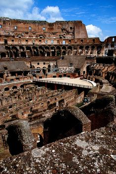 We visited The Colosseum, Rome after a cruise from Venice to Rome. It was the prefect ending to a great trip.
