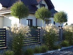 Small Front Yard Landscaping, Privacy Landscaping, Garden Landscaping, Fence Design, Garden Design, Dream Garden, Home And Garden, Scandinavian Garden, Balkon Design