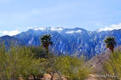 Mt. San Jacinto, Palm Springs. View from just north of San Rafael & Hwy 111. Photo by Tayva Martinez