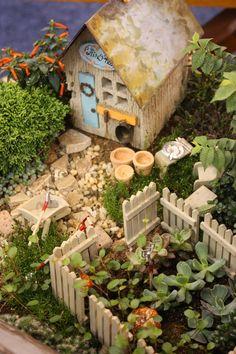 Garden Thyme with the Creative Gardener: Creative Fairy Garden Ideas