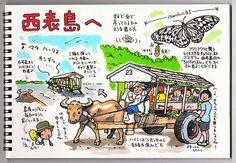 """トキシン tokishin--この前の西表島をイラストで。の画像:トキシンのイラストレーター的""""沖縄""""生活"""