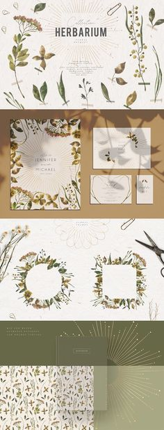 Herbarium Watercolor Collection by Julia Dreams on @creativemarket