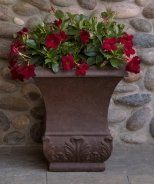 Sun Parasol® Garden Crimson Mandevilla