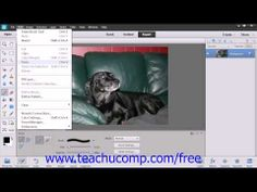 Learn how to use the brush tool in Adobe Photoshop Elements at www.teachUcomp.com. A clip from Mastering Photoshop Elements Made Easy v. 12. http://www.teachucomp.com/free - the most comprehensive Photoshop Elements tutorial available. Visit us today!
