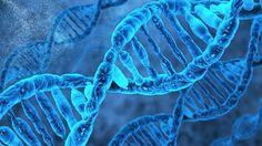 As vantagens do DNA sintético são diversas: guardar quantidades absurdas de dados em grande densidade, por exemplo