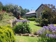 Basket, Range, Australia, Plants, Stove, Baskets, Plant, Range Cooker, Hamper
