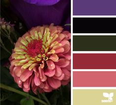 Moody Hues - http://design-seeds.com/index.php/home/entry/moody-hues