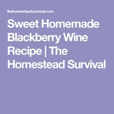 Sweet Homemade Blackberry Wine Recipe | The Homestead Survival