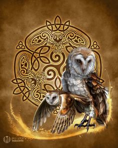 ABOUT THIS ART: WISE OWL - gorgeous barn owls with vibrant colors  surrounded by an elaborate and completely new and original Celtic Knotwork  Triskele design by Celtic Knotwork artist Brigid Ashwood  PRINTS OPTIONS:  8x10 Print - Actual paper size is 8.5x11. Matte finish. Image is formatted
