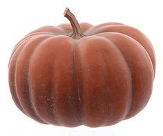 Pumpkin - 20cm