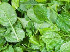 Špenát není tak bohatý na železo. Omyl možná způsobila chyba v desetinné čárce Spinach, Smoothie, Boho, Vegetables, Fitness, Smoothies, Bohemian, Vegetable Recipes, Veggies