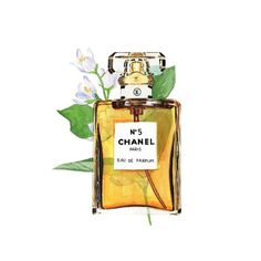 Chanel print perfume illustration wall art  2 sizes