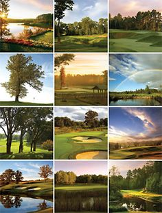 Minnesota Calendar Golfing. More people play golf in Minnesota per capita than any other state. Approximately one resident of every five in hits the links each year.