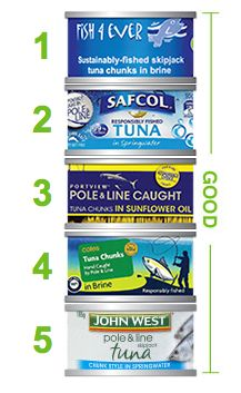 Which Tuna Should I Buy And There Are Good Choices You Can Make You Can Choose And Vote With Your Dollar This Does Make A Difference