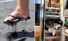 Quando o calor está demais (23 fotos) >> https://www.tediado.com.br/03/quando-o-calor-esta-demais-23-fotos/