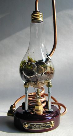 Pipe, Vessel, and Moss by Steamed Glass