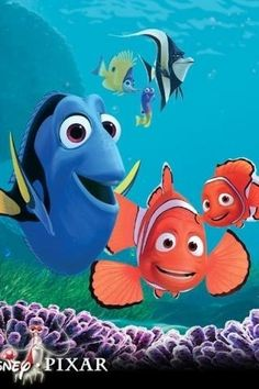 "If ""nemo"" in Latin means ""no one""... Dory had every right to be confused!"