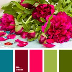 """baby blue"" color, ""baby pink"" color, blue shades, bright pink color, color matching, contrasting colors, dark green color, emerald color, green color, hydrangea color, pale pink color, Pantone colors 2016, pink shades, purple color, rich colors, saturated pink color."