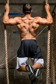 How beginners can build a massive back - Guide discusses the back, its function, and exercises. Try these 5 great back workout programs for size.