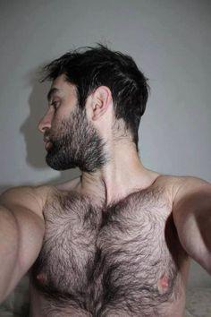 Furry Hotties