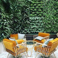 Doesnt this look like spring! . . . . . . . . . . . . . . . @bastilleandsons #spring #orange #outdoors #outdoorliving #greenspace #landscape #greenwall #entertainment #jonquilliving #simpleliving #retro #interiordesignidea #instagood #australia #summer #ecoliving #organic #cotton