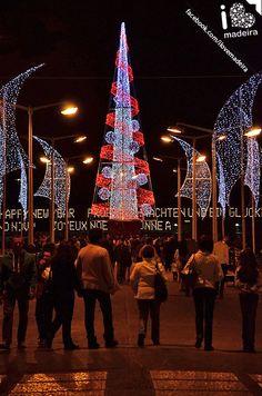 FESTAS DE NATAL E FIM DO ANO – FESTAS DA MADEIRA 2012 ♥ NÓS VAMOS! E TU?