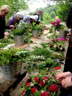 VOM HÜGEL Steiermark Flower Farm, Herbal Remedies, Farmers Market, Herbalism, Flower Shops, Nature, Flowers, Plants, Shabby