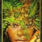 Lord of the Flies Chronolog Reading Guide FREE