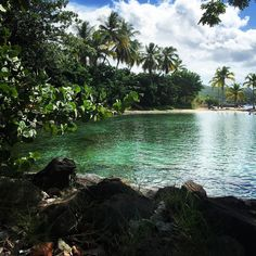 "Repost from Instagram ! #WeLike ! #Madinina by @lesjolismoments ""Il est tellement beau ce coin de Martinique #pointedubout #martinique #madinina #troisilets #frenchwestindies"" http://ift.tt/1MgJxMq"