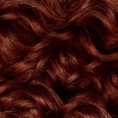 Natural Instincts Clairol Non-Permanent Hair Color - Medium Auburn, Cinnaberry - 1 Kit : Target Honey Brown Hair, Light Brown Hair, Dark Hair, Blonde Hair, Red Hair Color, Brown Hair Colors, Green Hair, Clairol Natural Instincts, Non Permanent Hair Color