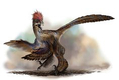 Anchiornis huxleyi by ~cheungchungtat. Jurassic Era.