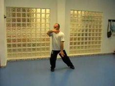 TAI CHI CHUAN EN MURCIA - Forma YANGShi de 16 movimientos.