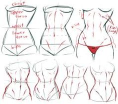 Image result for anatomy tumblr tutorial