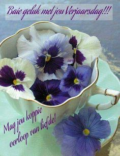 A Cup Of Pansies purple and white in a pale turquoise scalloped teacup.