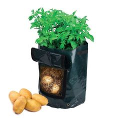 newcomdig Garden Potato Grow Bag Vegetables Planter with Access Flap for Harvesting ~ Eco-friendly Waterproof